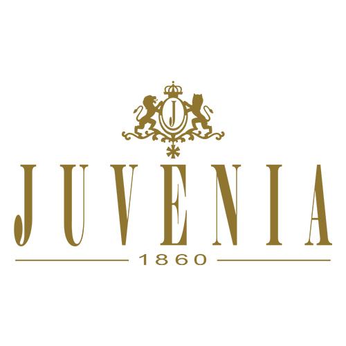 Juvenia尊皇维修中心